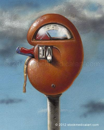 Kidney-Meter