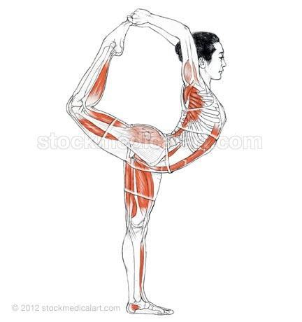 Natarajasana-_-Dancers-pose